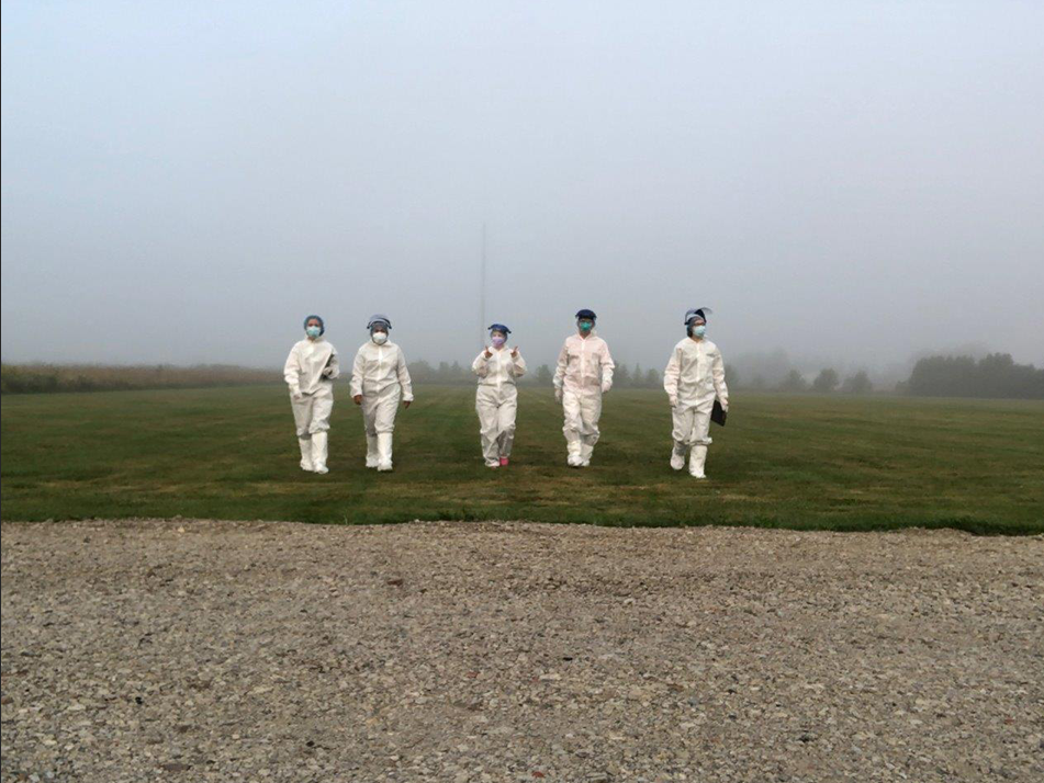 Healthcare workers walk through the mist
